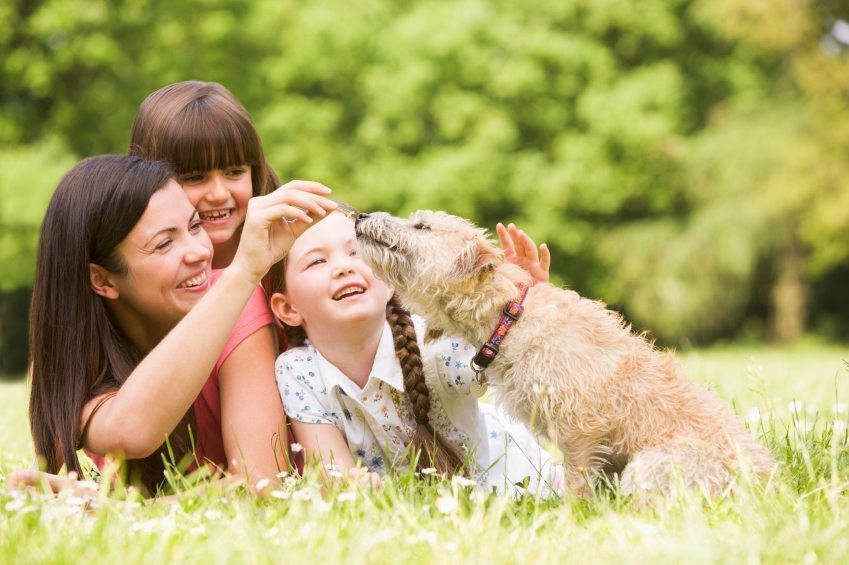 Pets and Family